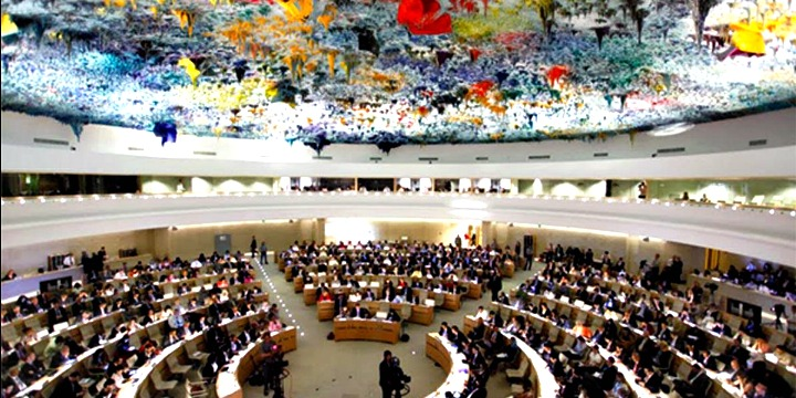 unhrc, united nations
