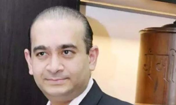 nirav modi, interpol, red corner notice, tax evasion