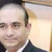 arrested nirav modi, interpol, red corner notice, tax evasion