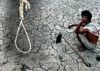 farmer, loan, suicide
