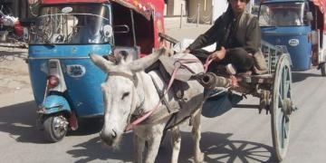 FDI, Pakistan