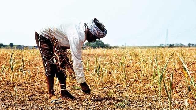 कर्ज माफ़ किसान